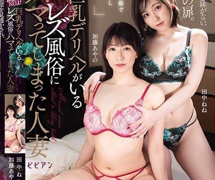 [BBAN-331] ผู้หญิงที่แต่งงานแล้วที่ติดเซ็กส์เลสเบี้ยนกับหัวนมใหญ่ Deriheru Nene Tanaka Ayano Kato